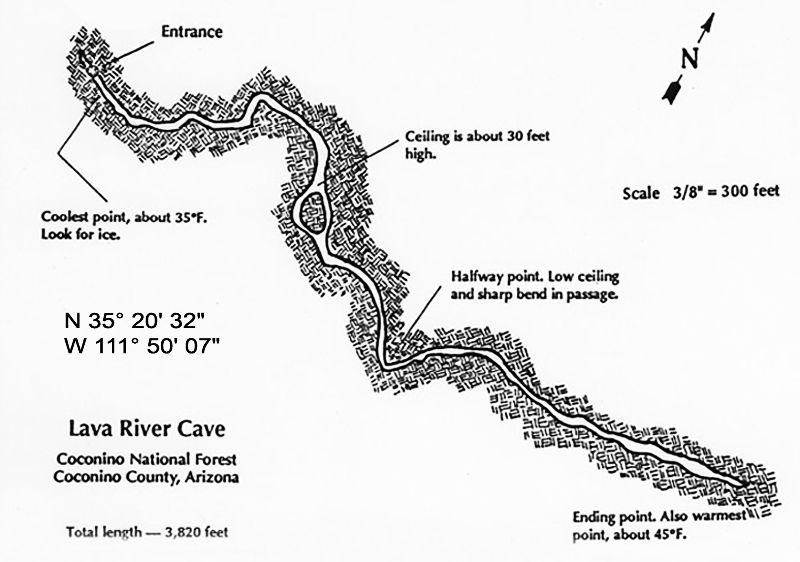Ultimate Guide to Lava River Cave, Arizona (tours, pricing, history, map) map