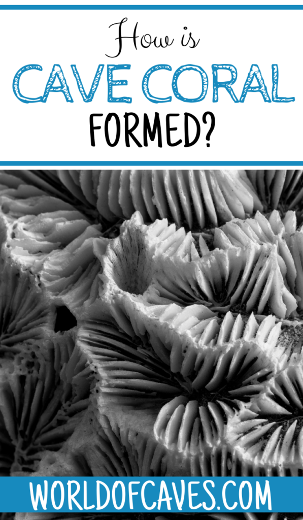 How Is Cave Coral Formed?